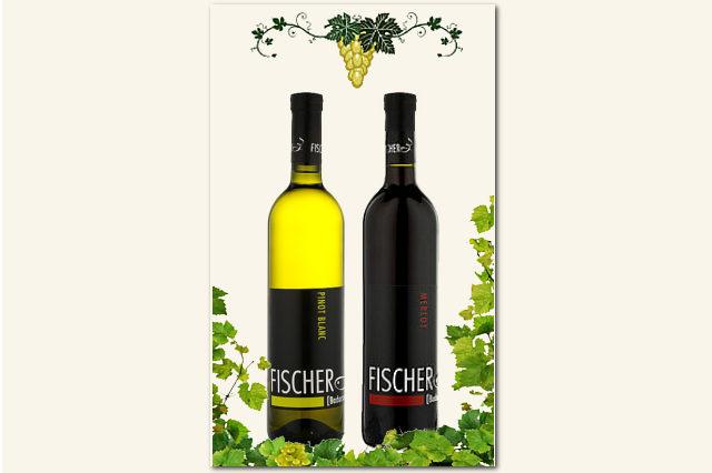 Fischer Pincészet: Syrah, Merlot, Pinot Blanc